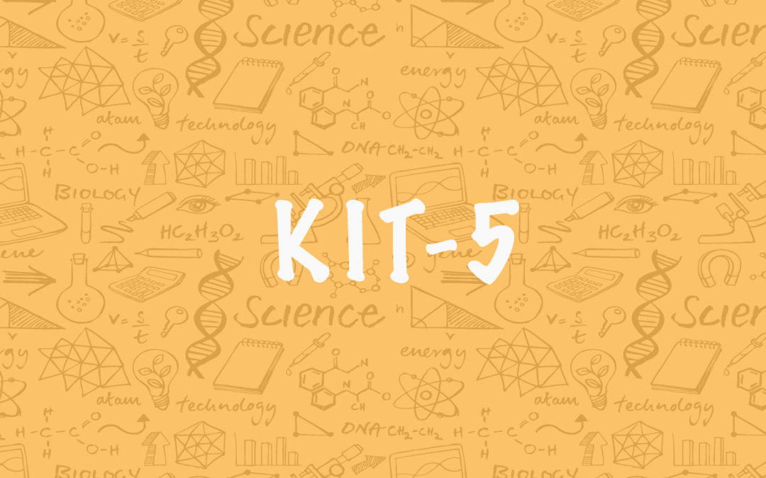 Kit 5 – Solar Cookers