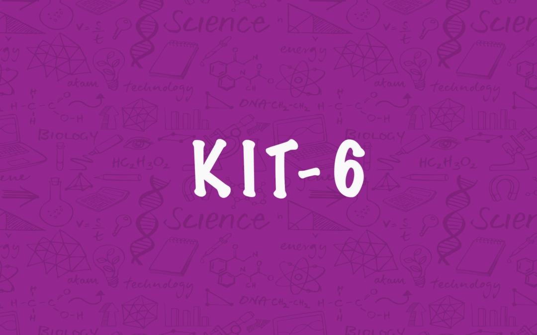 Kit 6 – Robot Walkers